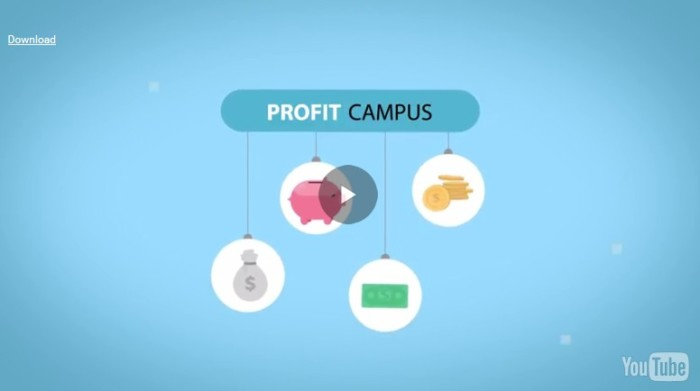 Video Pal Profit Campus by Todd Gross 1